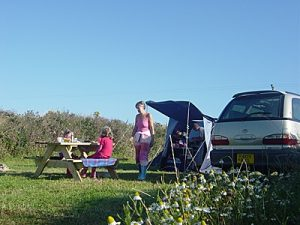 Garn Isaf Camping Abercastle Pembrokshire Coastal Path South Wales